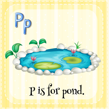 pond water: Flashcard of a letter P with a picture of a pond