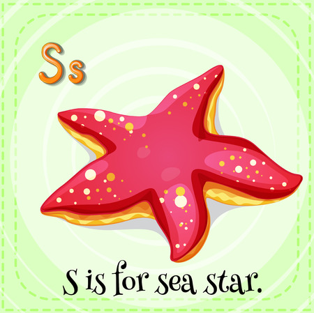 sea star: Flashcard letter S is sea star