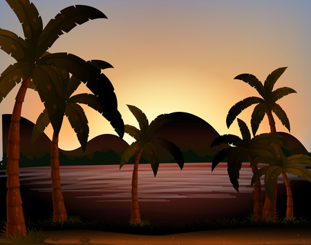 coconut trees: Beach scene with coconut trees on the ground