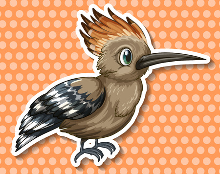 Rare bird on orange polka dot background
