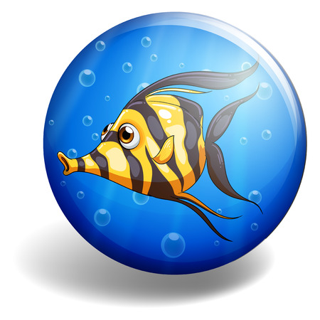 under water: Yellow striped fish swimming under water