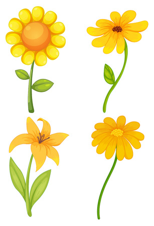 Four different kinds of yellow flowers royalty free cliparts four different kinds of yellow flowers stock vector 41787939 mightylinksfo