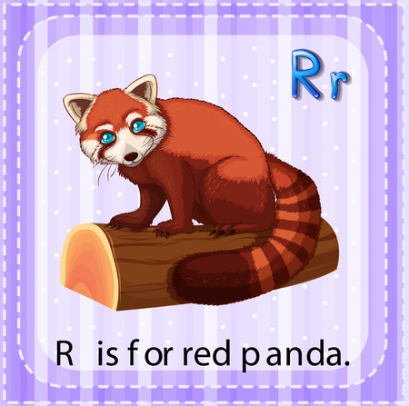 letter alphabet pictures: Flashcard letter R is for red panda