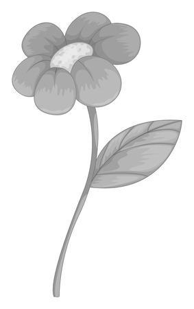 single flower: Single flower with leaf in gray Illustration