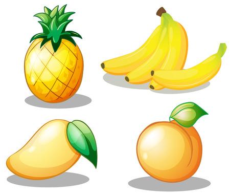 manzana caricatura: Grupos de tarjetas de color amarillo fijado con cuatro frutas sobre fondo blanco