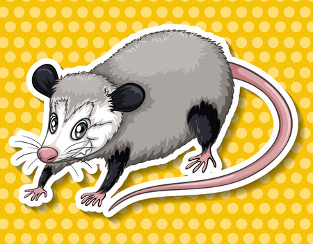 cunning: Sticker of a cunning looking rat on yellow background Illustration