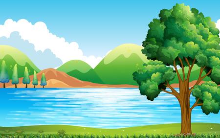 Natuur scène van het meer en het park