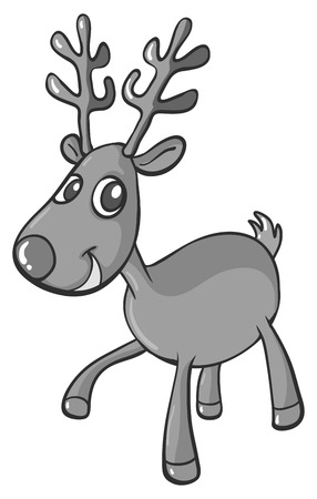 caribou: Cute reindeer in black and white