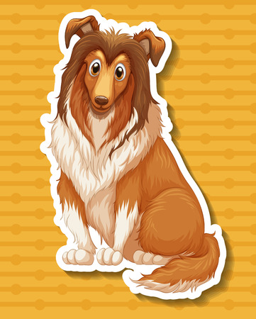hound: Afghan hound sitting on yellow background Illustration