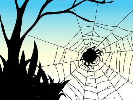 spider web: Silhouette spider on web illustration