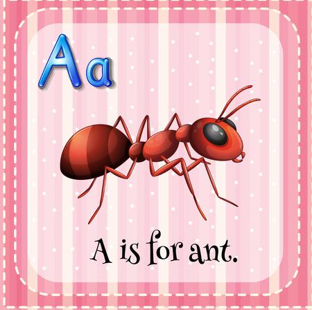 hormiga: Flashcard A es de hormiga ilustración