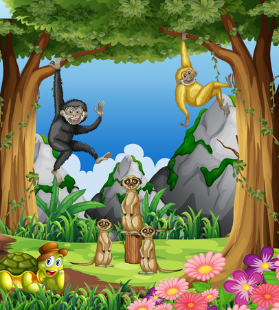 Monkeys and meerkats in the forest illustration