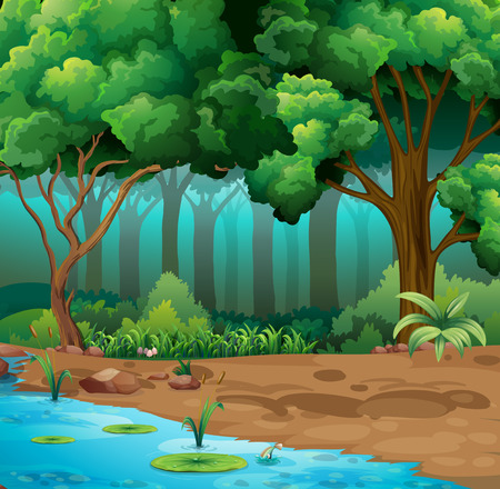 dark forest: River run through the jungle illustration Illustration