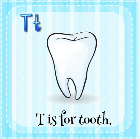 school illustration: Flashcard letter T is for tooth illustration Illustration