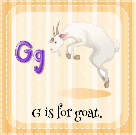 children education: Flashcard letter G is for goat illustration Illustration