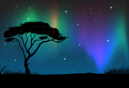 field and sky: Silhouette field with aurora sky at night  illustration