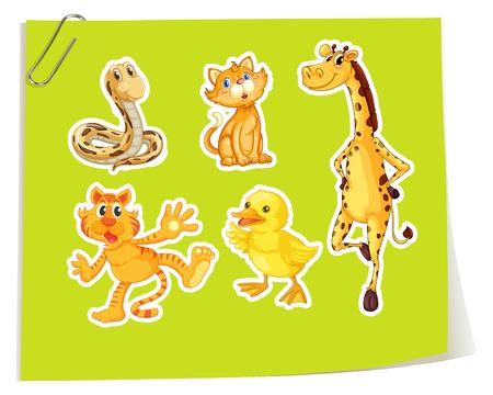animals in the wild: Wild animals on yellow paper illustration