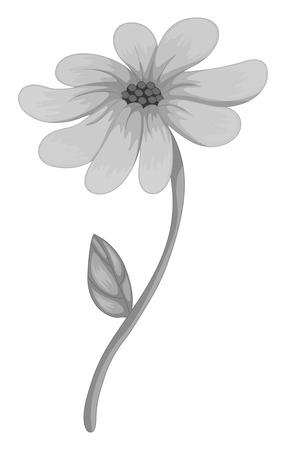 single flower: Single flower on white illustration Illustration