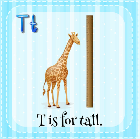 tall: Flashcard letter T is for tall illustration