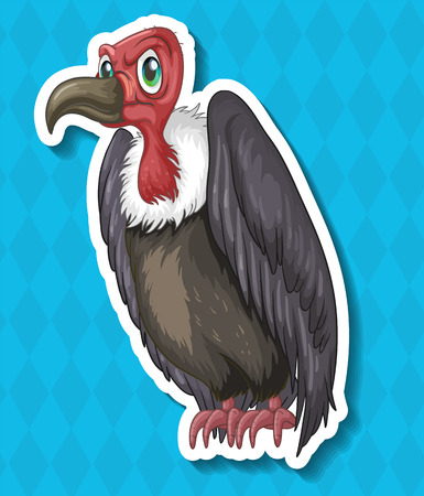 vulture: Vulture looking angry on blue background illustration