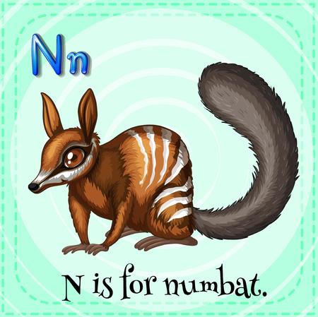 letter alphabet pictures: Flashcard letter N is for numbat illustration