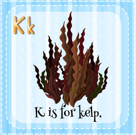 letter k: Flashcard letter K is for kelp illustration