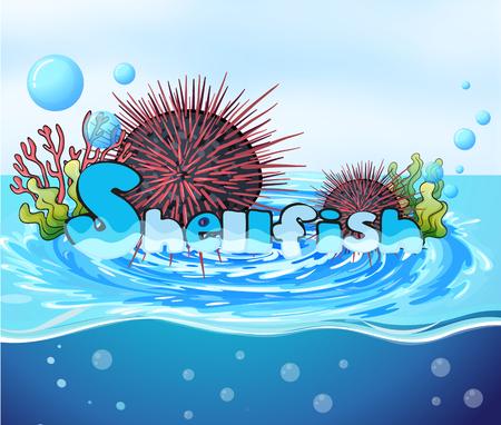 sea water: Sea urchin floating on water illustration