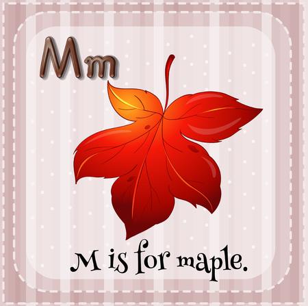 letter alphabet pictures: Alphabet M is for maple illustration Illustration
