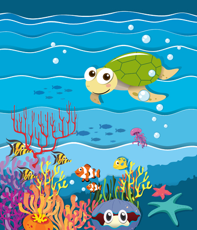 clownfish: Underwater scene with turtle and fish illustration