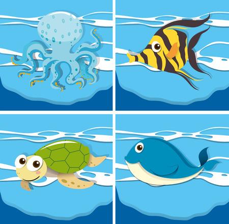 sea animals: Four different sea animals illustration