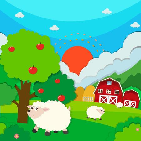 sheeps: Sheeps running in the field illustration