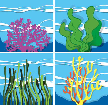 ocean plants: Coral reef under the sea illustration