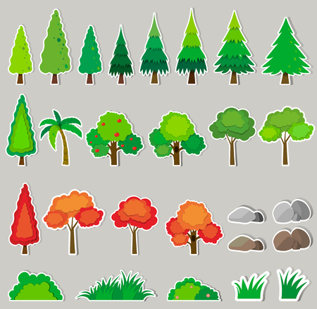 pine apple: Different kind of plants illustration