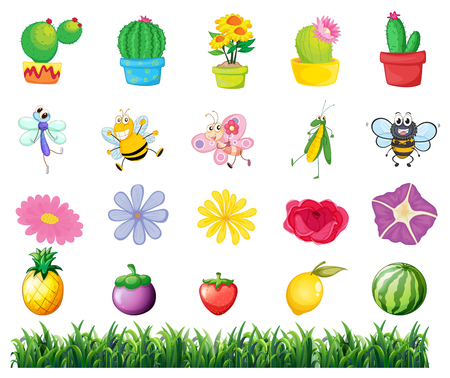 insect flies: Plants and insects in the garden illustration