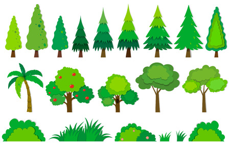 Different kind of trees illustration