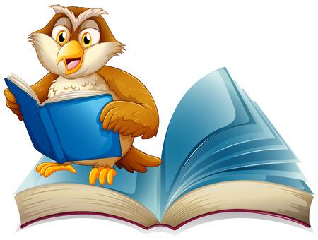novels: Cute owl reading a book illustration Illustration
