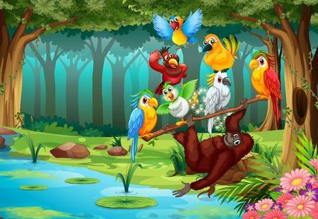 oiseau dessin: Les animaux sauvages dans l'illustration de la for�t Illustration