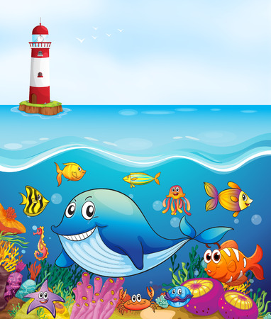fish clipart: Sea animals swimming under the ocean illustration
