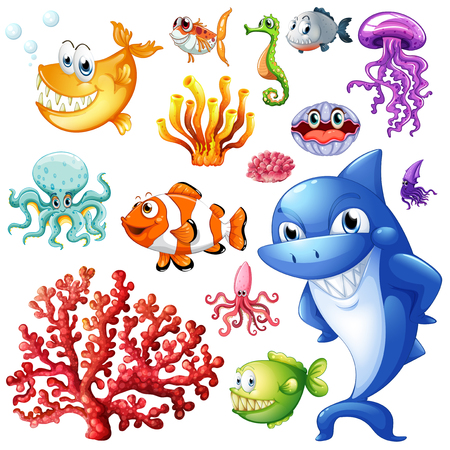 carnivorous animals: Sea animals and coral reef illustration Illustration