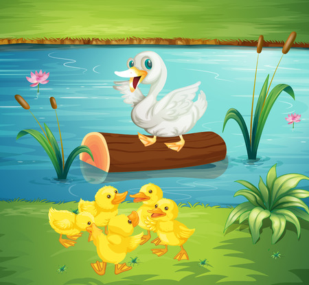 river bank: Duck family by the river illustration Illustration