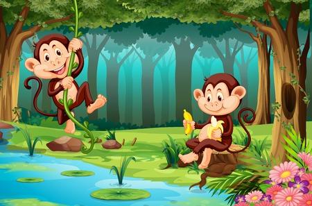 Monkeys living in the jungle illustration