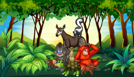 wild living: Various kind of wild animals living in the forest illustration