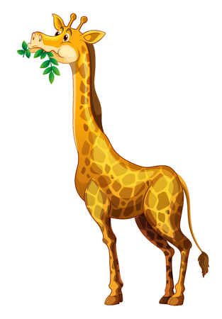 chewing: Cute giraffe chewing on leaves illustration