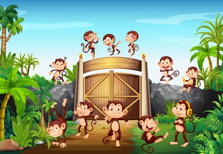 wild living: Monkeys having fun at the gate illustration Illustration