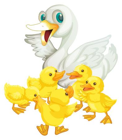 Mère canard et cinq canetons illustration