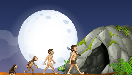 apes: Apes and human development illustration