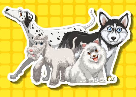 pet breeding: Four cute dogs on yellow background illustration