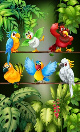 guacamaya caricatura: pájaros salvajes que se colocan en la ilustración de la rama Vectores