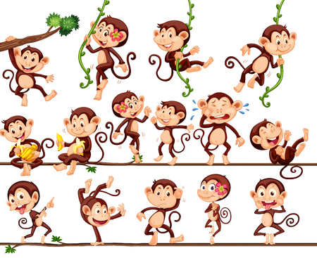animals in the wild: Monkeys doing different actions illustration