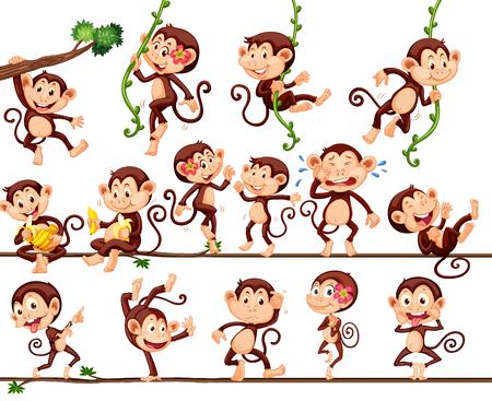 animales safari: Monos haciendo diferentes acciones ilustración